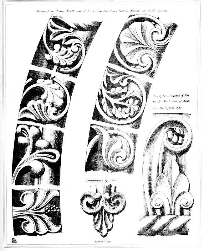 B Plate 4 From Analysis Of Gothic Architecture Showing Carved Foliage Details The Particularly Beautiful New Shoreham Church St Mary De Hauras