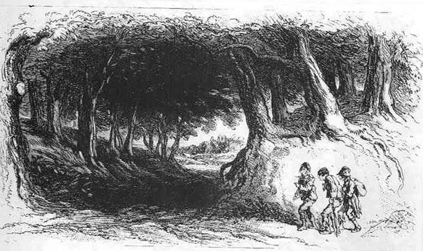 U.p. Moose The Tramps (illustrati...