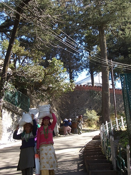 Hill-women carrying goods into Simla