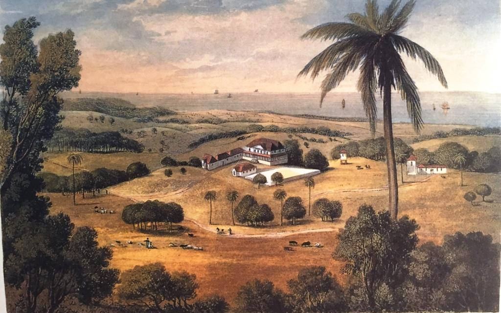 The Great Houses of Jamaica