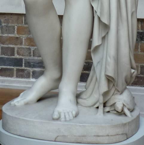 Tortoise At The Feet Of The Venus Verticordia By John