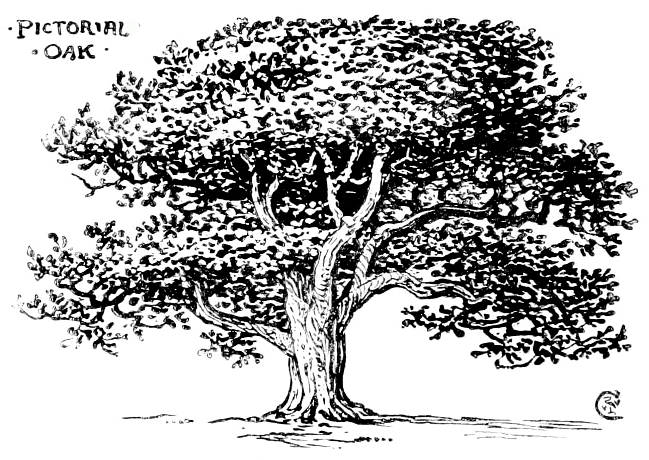 Line Art Tree : Quot design part i by walter crane